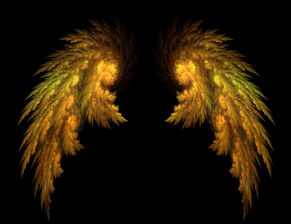 angel_wings_by_tigoth-d496xn1